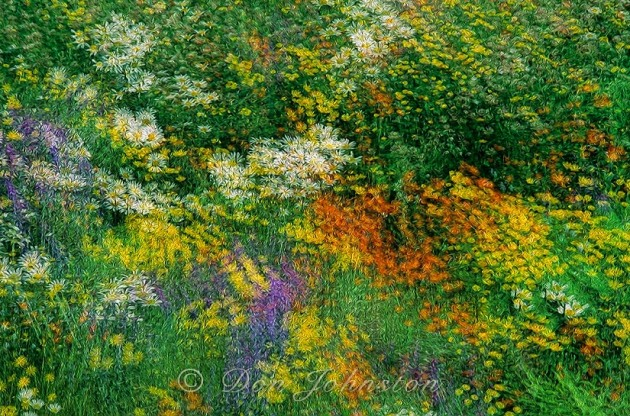 Summer wildflowers Multiple exposure- Oil Paint Filter