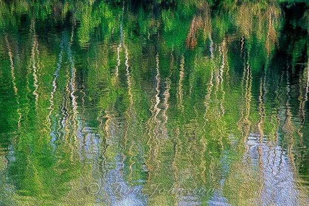 Spring reflections, Oil Paint Filter