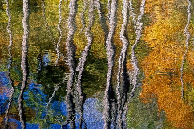 Autumn reflections, Oil Paint filter