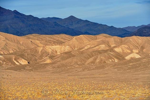 near Mesquite Sand Dunes