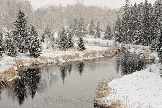 Junction Creek snowfall 2012