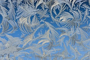 Garage window frost feathers. Blue shadowed snow background.