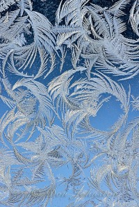 Garage window frost feathers. Sometimes a 2-3 frame focus stack is needed if sharpness varies from top to bottom.