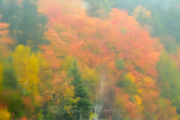Autumn trees as seen through a rain-soaked window. ⅛ s @ f16 ISO 800