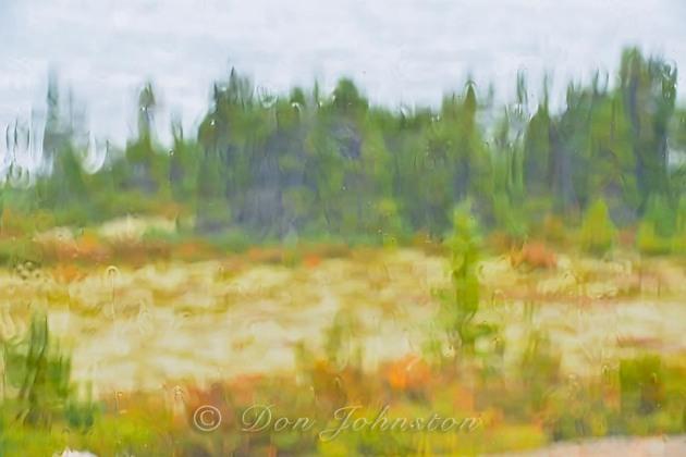 Subarctic taiga as seen through rain-soaked window. ⅛ @ f16 ISO 1600