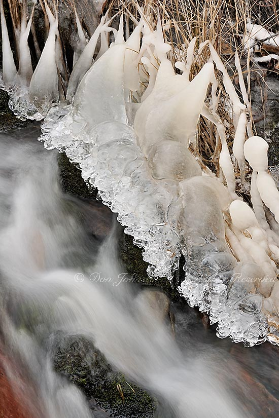 Ice coated grasses and flowing water